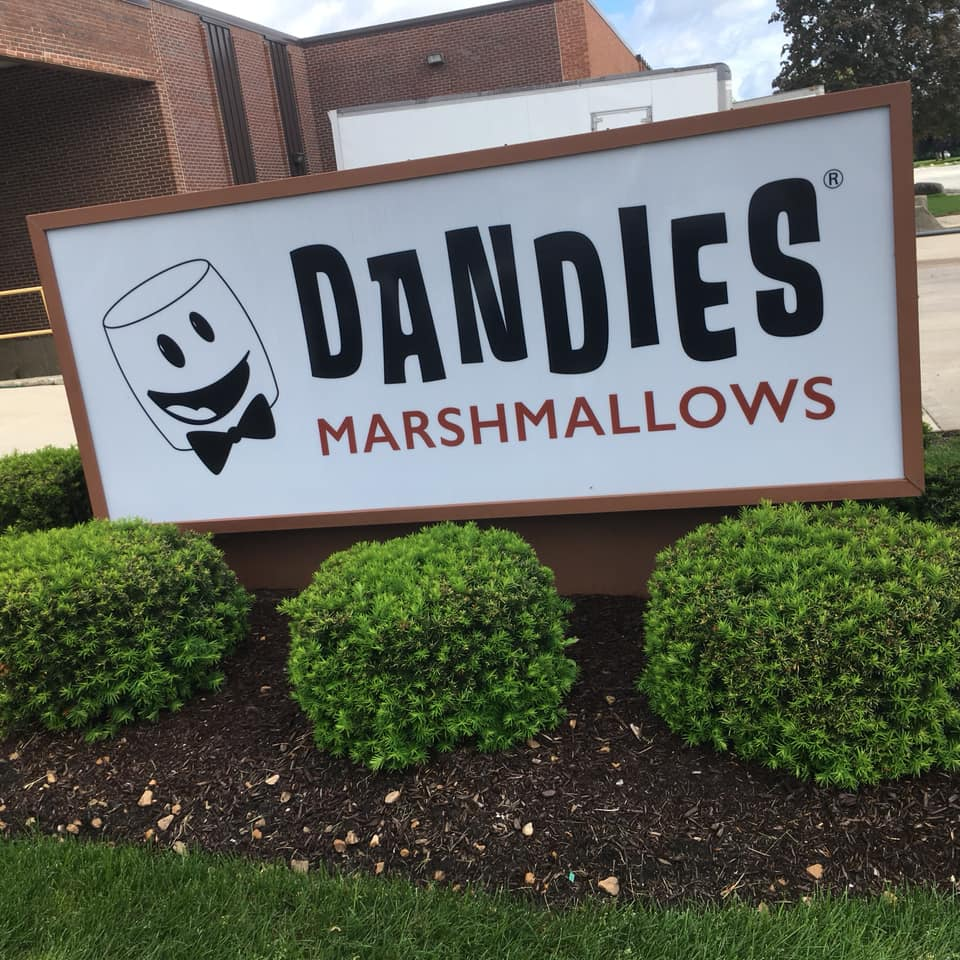 Dandies Marshmallows on Awesome Vegans with Elysabeth Alfano